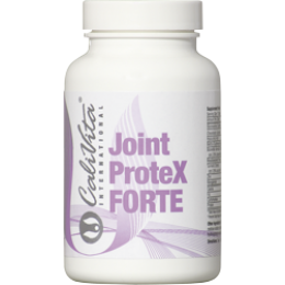 Joint Protex Forte 90 tableta